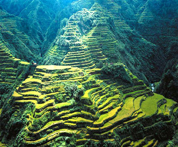 Banaue Rice Terraces, Fugao